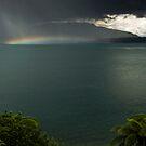 Fallen Rainbow by Michael Treloar