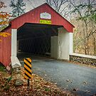 Cabin Run Covered Bridge by Debra Fedchin