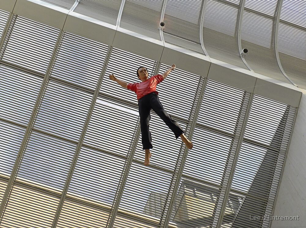 Suspended in Air. by Lee d'Entremont