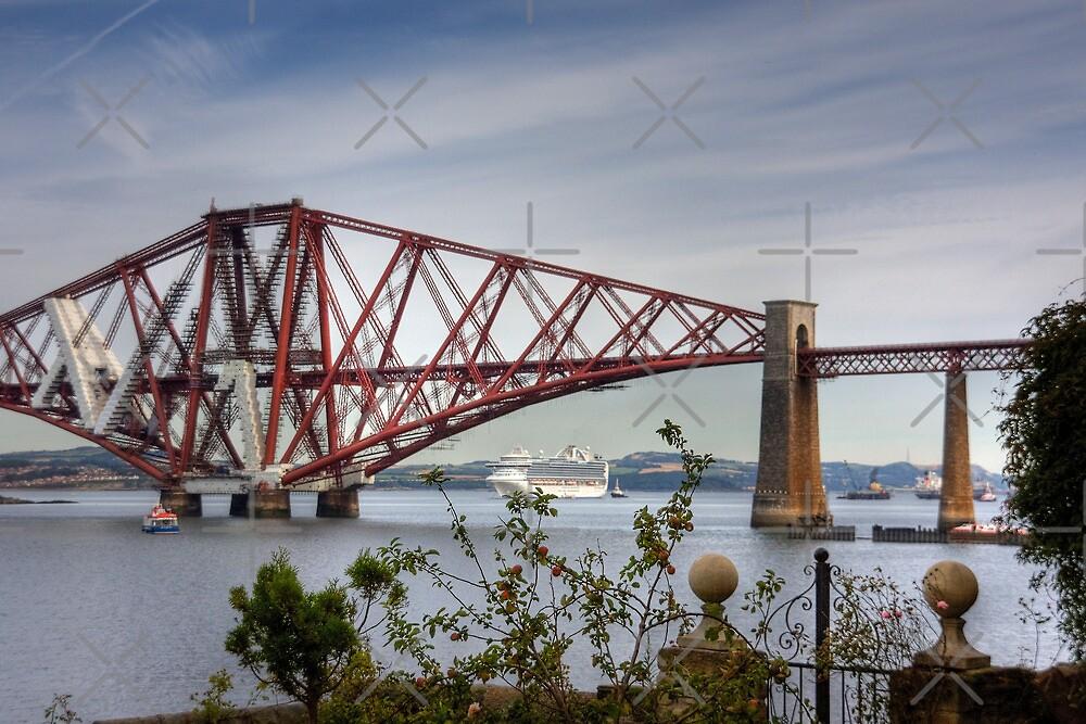 Liner under the Bridge by Tom Gomez
