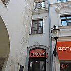 The narrowest house, Bratislava, Slovakia by Margaret  Hyde