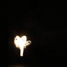 fairy lights by coreydavidmay