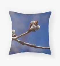Pussy Willows Throw Pillow