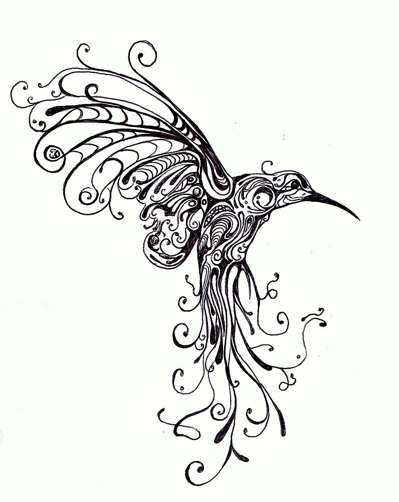 Line Drawing Hummingbird : Quot hummingbird pattern by kate gorrie redbubble