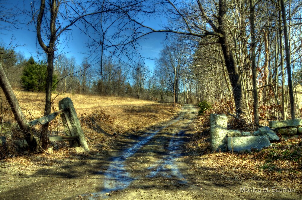 Focus on the Journey by Monica M. Scanlan