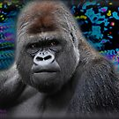 Portrait of an expressive Siverback Gorilla #2 by TheBrit