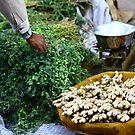 Local market - Bundi, India by fionapine