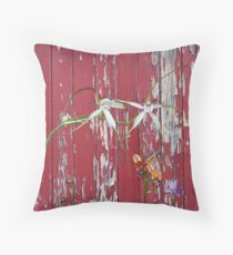 Longicordia Orchid with Red Painted Wall, native orchids of Western Australia. Throw Pillow