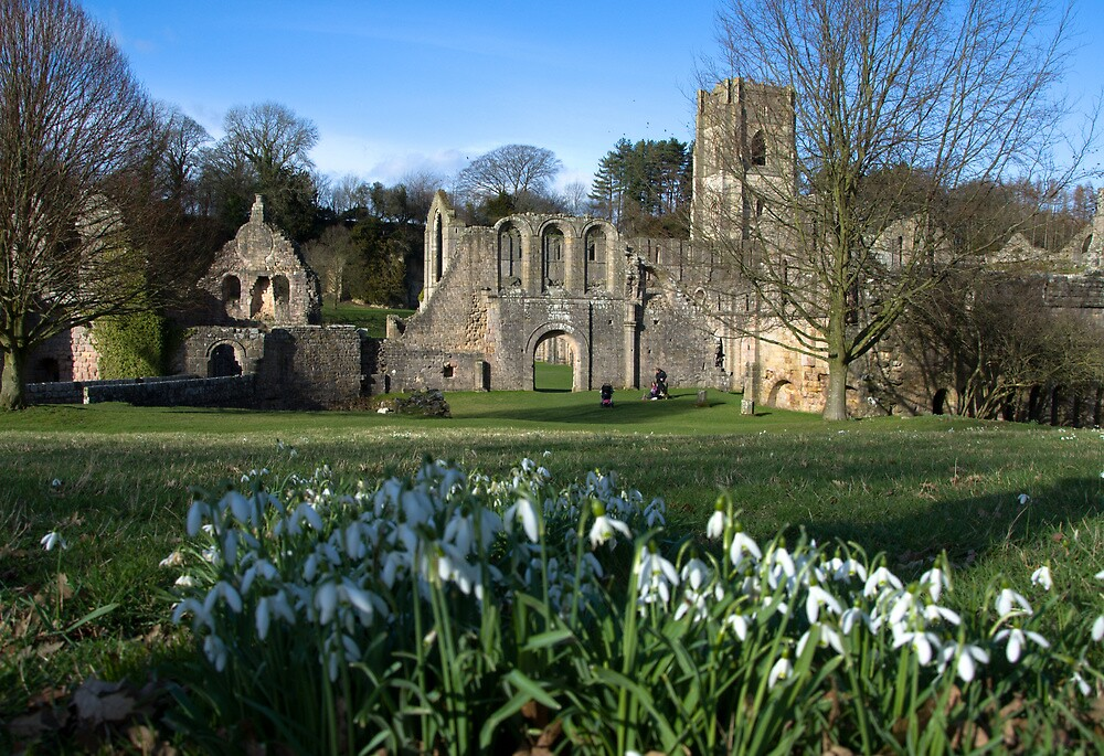 Fountains Abbey -Spring 2012 by robmed56