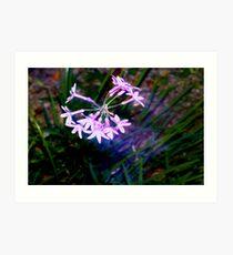Rapture in purple Art Print