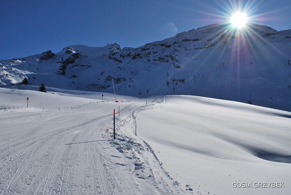 Swiss Alps by GOSIA GRZYBEK