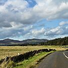 Cycling Country by Lynne Morris