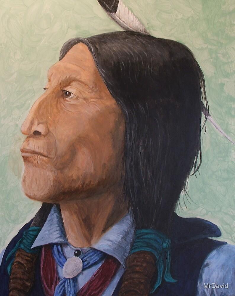 Wolf Robe Cheyenne Chief by MrDavid