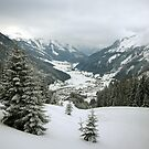 Here Be Snow by berndt2