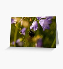 This one is mine! Greeting Card