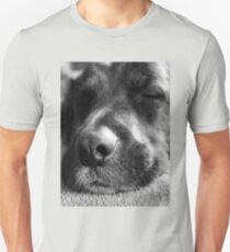 Let sleeping dogs lie Unisex T-Shirt