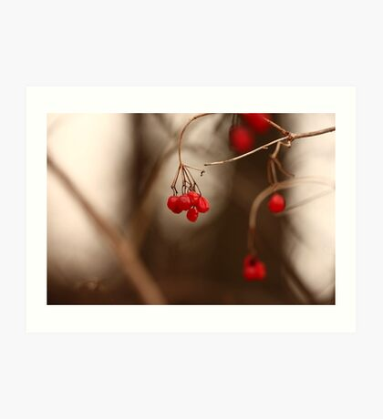 Abstract Red Berries Art Print