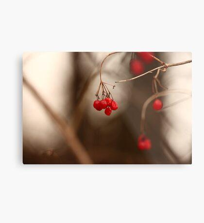 Abstract Red Berries Metal Print