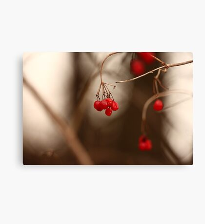 Abstract Red Berries Canvas Print