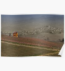 vineyard in Italy Poster