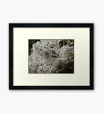 Like Snowslide - Como Una Avalancha  Framed Print