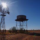 Station Windmill - Qld. by Liz Worth