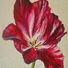 Crimson and White Tulip by Susan Duffey