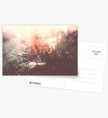LAZY CALM Postcards