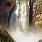 Lower Yellowstone Falls  by jeff welton