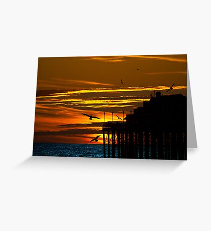 Birds at Sunset Greeting Card