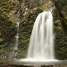 Fall Creek Falls by Chappy