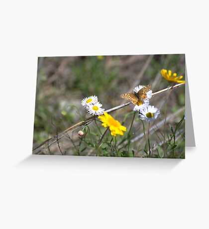 Texas Spring Color Greeting Card