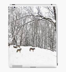 A winter scene - with Coyotes  iPad Case/Skin