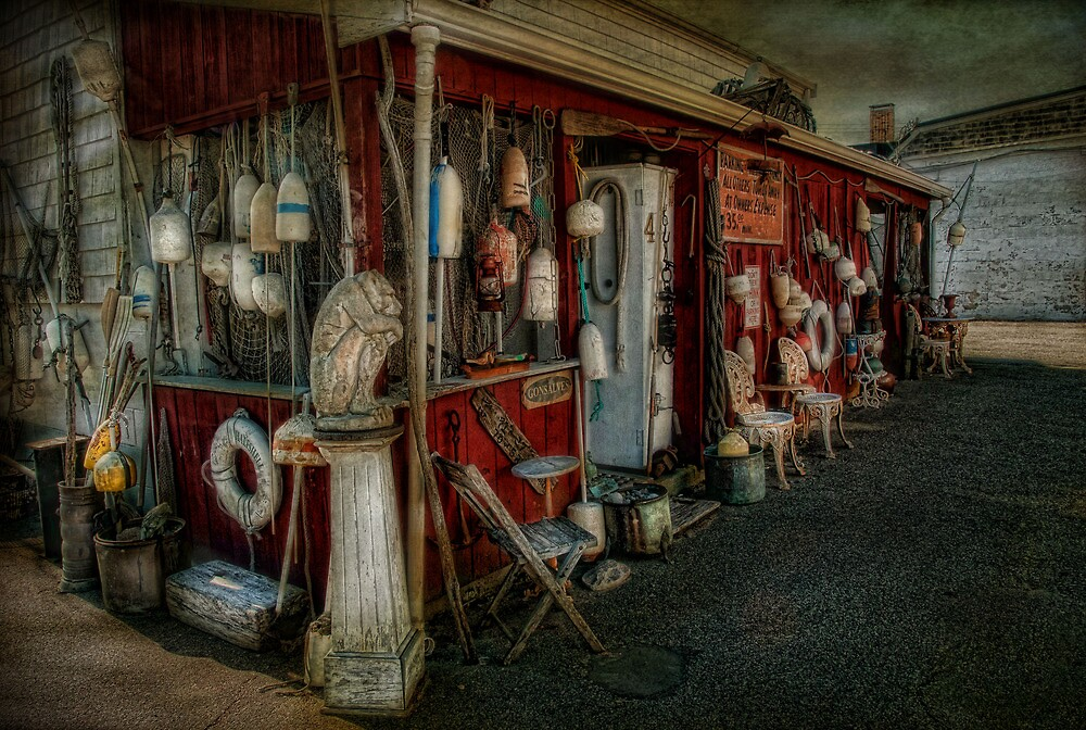 Eclectic by Robin-Lee