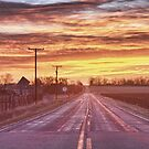 Country Road Sunrise by Bo Insogna