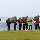A rainy summer day in Sydney ! by Anthony Goldman