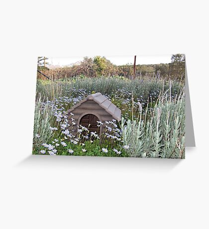 New Home Kennel Greeting Card