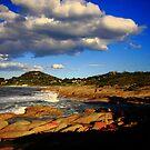 blue sky. eastcoast, tasmania by tim buckley   bodhiimages