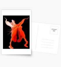 Night Shade Postcards