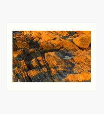 Weathered Shoals  Art Print