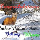 Challange Winner Banner..Mother Natures finest by MaeBelle