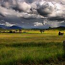 Sunshine & Rain by Kym Howard