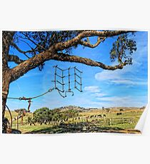Hanging around the farm on a sunny day Poster