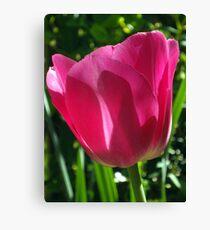 Cheerful Tulip Canvas Print