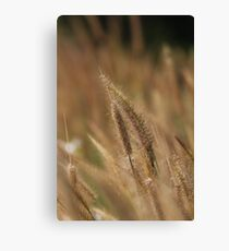 I love Grass. Canvas Print
