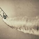 Barnstorming by Kingstonshots