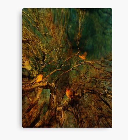 Don't Part with Illusions Canvas Print