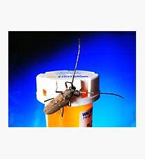 Bug on Drugs (:>) Photographic Print