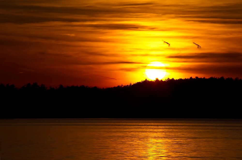 Sunset Colors by Tom Gotzy