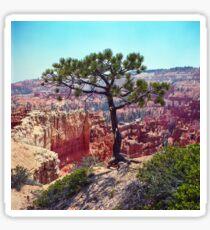 Canyon View Sticker